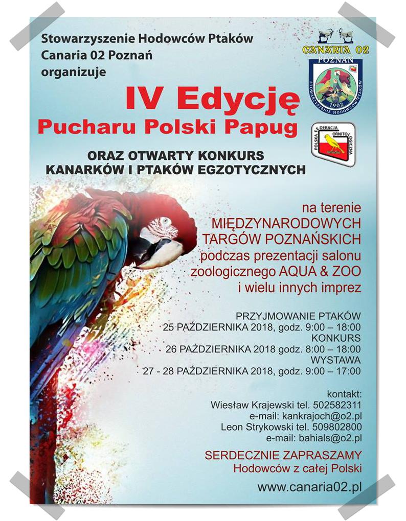 IV Edycja Pucharu Polski Canaria 02