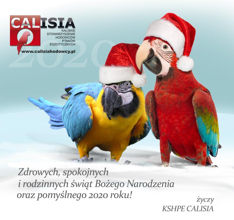 Zdrowych i spokojnych Świąt!